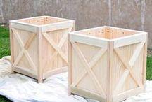 Container Gardening / Unique Ideas and Creativity