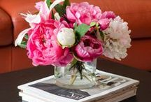 Floral Arrangements / Beautifying your home with flowers