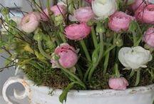Ready for spring / Mijn inspiratie voor het komende lente seizoen.
