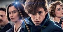Fantastic Beasts and wtft