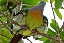Parent & Child / bonding
