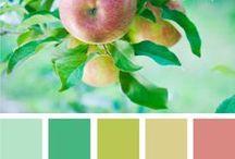Color Combinations  / by Deyanira Fondeur