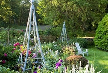 Home Stuff-Gardening & Outdoors / by Wendy Penwright