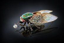 Bugs ♥ Bugs ♥ Bugs!