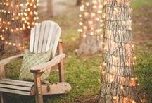 Backyard / by Nicole Lauby