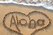 Maui No Ka 'Oi  / Maui is the best!  live aloha! Practice aloha! / by MK Davis