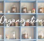 :: ORGANIZATION ::