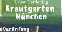 Krautgarten München: Unsere Erfahrung & Gartentipps