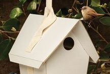 For the Birds / by KidsGardening.org Shop