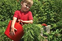 Kids' Tools & Equipment / by KidsGardening.org Shop