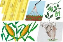 Agriculture Articles and Commentary / Agricultural practices to improve soil health.