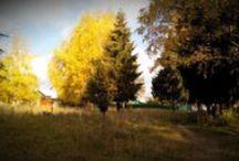 Seasons / Photos of spring, summer, autumn, winter.