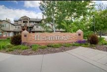Property Listings / Find an amazing selection of properties available in Colorado.