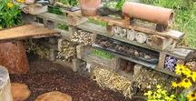 Peaceful Gardening / Szelíd Kertészet