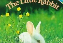 B4FIAR- The Little Rabbit / by Rebecca Dvorak