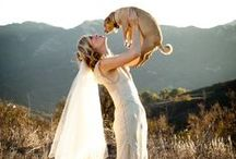 My Pets at the Wedding / How to get your dog or cat involved in your big day! My Pet Warehouse Wedding Day Pinterest Board.