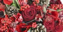 Christmas Bouquets / Each month, we create a bouquet using a selection of some of our favourite flowers for that time of year. Naturally, in December our thoughts turn to the holiday season! Welcome the festivities this year with these sumptuous, McQueens Christmas bouquets.