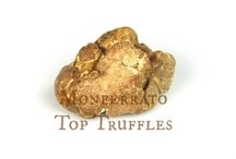 Top Truffles / The Excellence is Truth, at the Monferrato Hills