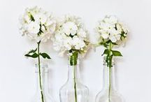 Flowers, Bottles and Vases / Pretty, pretty things.