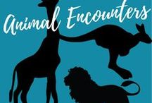 Animal Encounters / Fun places to visit where you can learn about and/or interact with animals.