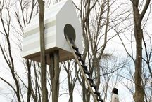 treehouse | to build and dream of