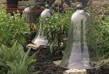 GARDEN - Cloche  / per l'orto for the chitcken garden