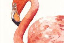 PAINT - Bird