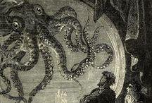Cephalopoda / Sottoclasse Ammonoidea† (Ammonoidi) Sottoclasse Nautiloidea (Nautiloidi) Sottoclasse Coleoidea (Coleoidi)