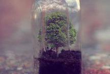 Sustainability / De maatschappij is zich steeds meer bewust dat er goed voor de aarde gezorgd moet worden. De toekomst van de komende generaties ligt in onze handen.
