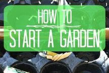{Learn To Garden} / Learning how to garden so we can grow our own veggies in our back yard.