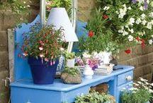 Garden - Outdoor / Tips og ideer til hage og uteområde