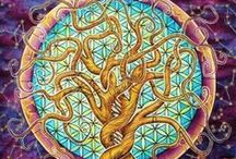 Elements and Sacred Geometry / Earth, Wind, Fire and Water are the basic energies of this realm.