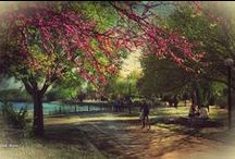 Ioannina - Greece