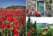 The Seasons of Tuscany / every season has its own magic...