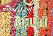 HAWAI'IAN Leis/Flowers/Fruits/Trees/Nuts/Shells & More / I CAN ALMOST SMELL THE FRAGRANCES OF HAWAI'I's SWEET FLOWERS - WELCOMING ME HOME... / by BonRu