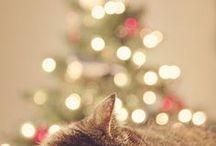Christmas atmospheres