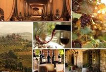 Things You'll Love About Tuscany! / Here are some of our favorites...