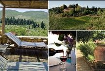 A Villa Vacation in Tuscany / the best way to experience authentic Tuscan living...