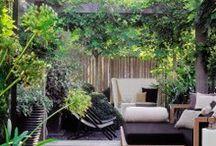 terrasse / idées pour l'aménagement de la terrasse