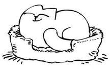 Simons cat!