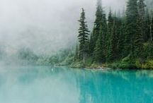 Our Favourite BC Parks / Where the wild wander