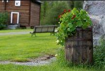 The Garden in Norway