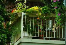 Byhave / Urban Garden Inspo