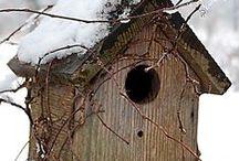 Vogelshuizen