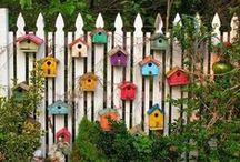 for our garden