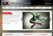 Website Portfolio 2009, 10, 11
