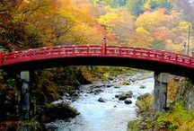 I Dream of Japan / This is the stuff of hopes and dreams: Japan 2014