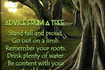 Natural Health Quotes / Natural Health, Wellness & Nutrition Quotes  Holistic Health ~ Mental, Physical & Spiritual Wellness