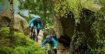 Fit. Flott. Fahrrad fahren / Draußen sein, aktiv sein. Ich liebe es, mich in der Natur zu bewegen. Im letzten Sommer war ich mit Kind und Hund mit dem Fahrrad in der Lausitz und auf der Hallig Langeneß unterwegs. Und weil mir das so gut gefallen hat, plane ich auch in diesem Jahr eine Fahrradtour. Vielleicht geht es dieses Mal in die Berge, vielleicht mit einem E-Bike? Mal schauen. Bis dahin sammel ich fleißig Inspirationen und Reisetipps. #Radfahren #Radreisen