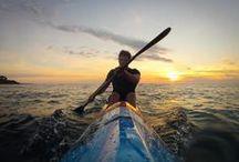 Kayak & Surfski